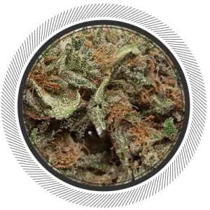 Buy Death Star weed online in Canada