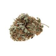 Cannabis Marijuana NW co PK Flower 02
