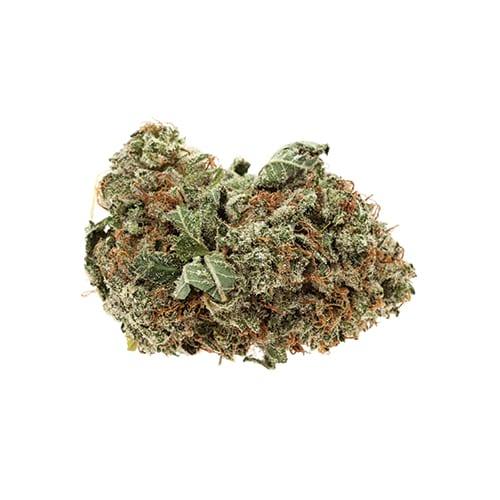 Marijuana NWC co Purple Candy Strain
