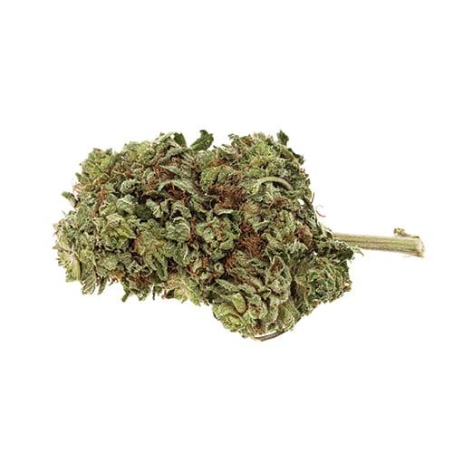 Marijuana NWC co Rock Star