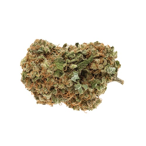 Marijuana Moby Dick 02
