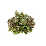 Cannabis Marijuana NWCo Pink Kush 02