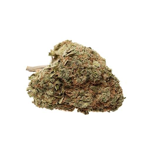 Marijuana NWC co Chemdawg 91 x Critical OG Indica 02