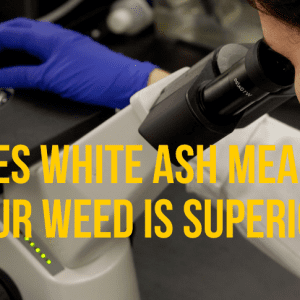 does-white-ash-mean-your-weed-is-superior