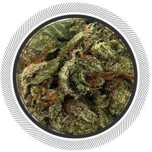 Buy Violator Kush online, buy weed online