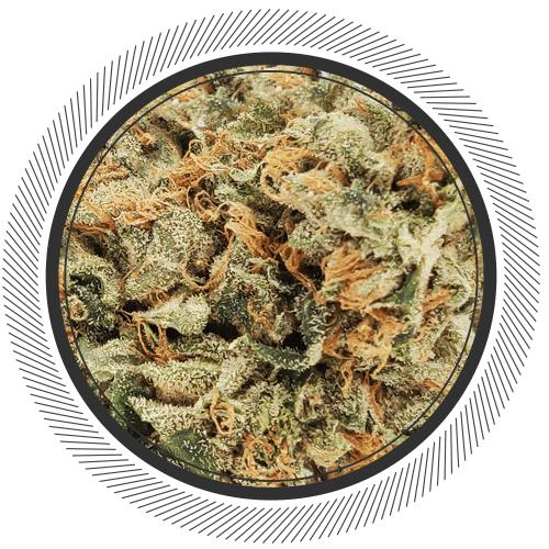 buy Death Bubba strain online Canada