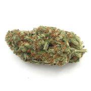Blue-Dream-WhitePalm-Onlline-Dispensary-2