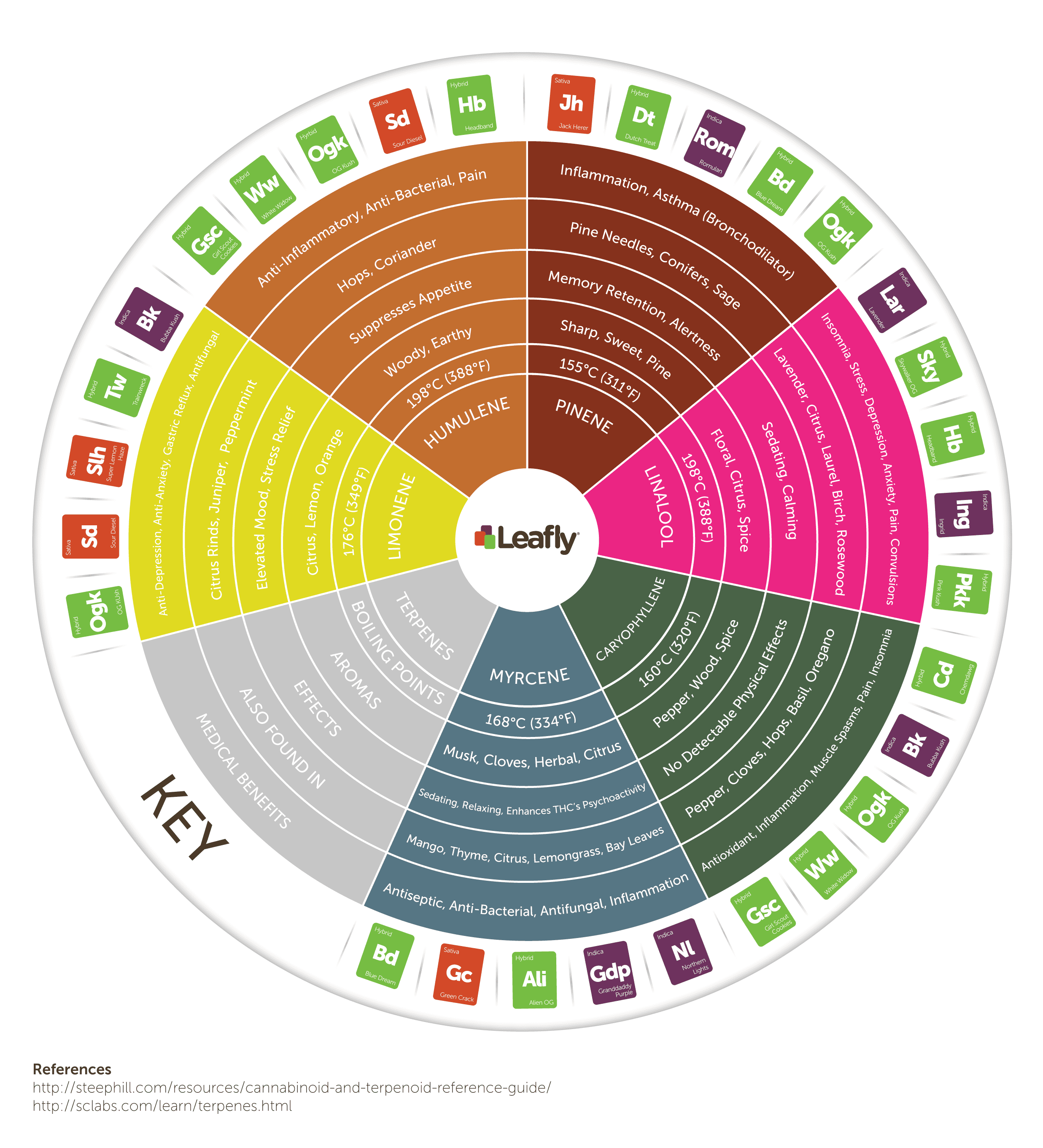 jXSS0pS1Sw2p2eq176GL_Leafly-Cannabis-Terpene-Wheel-Infographic