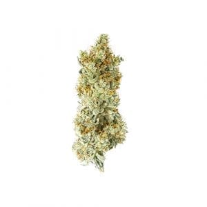 The strongest weed in our market, Gorilla Gue #4 from South Coast