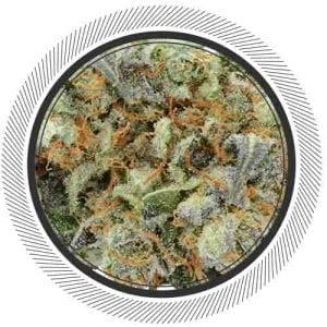 Hulkamania, $150 ounces for our community