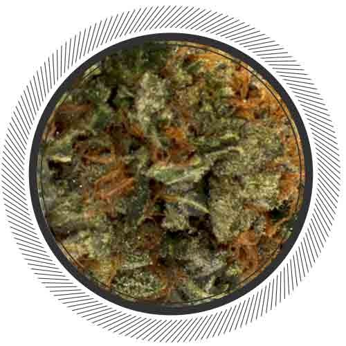 Try a real British Columbia grown Rockstar Kush, no fake stuff!