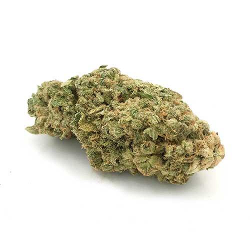 Order BC Hash Plant strain online
