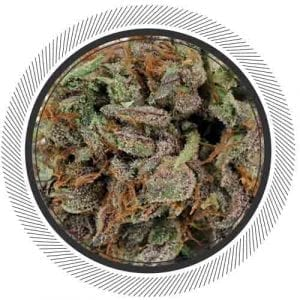 Master Kush has a very potent but level effect from start to finish