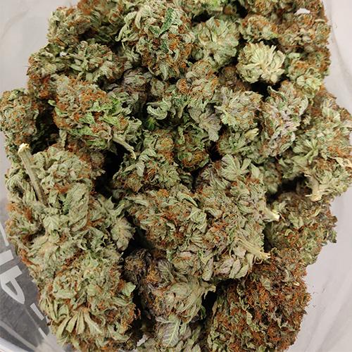 buy Master Kush strain online Canada