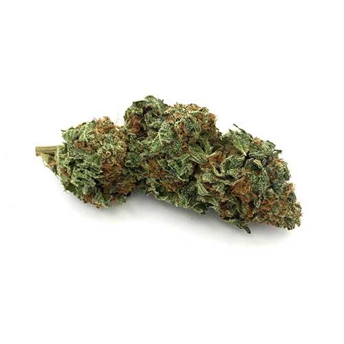 Buy weed online: Blueberry Sativa OMG
