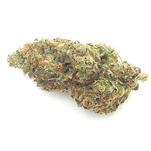 Buy Purple Haze online from Canada's#1 online dispensary