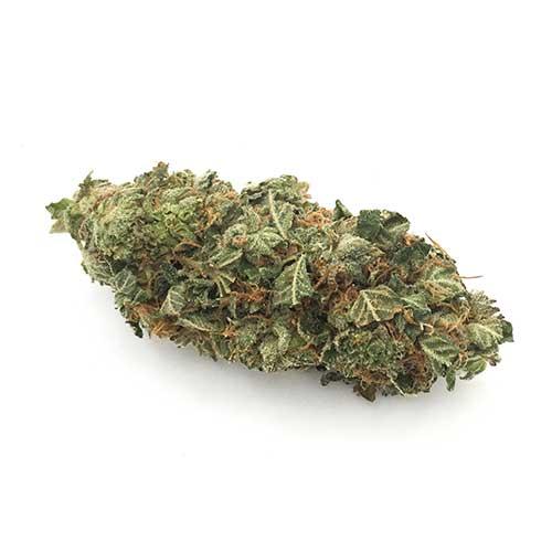 Buy weed online Supernova Sativa online in Canada