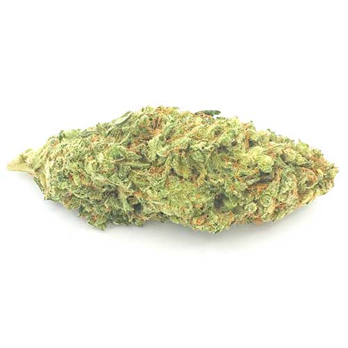 Buy Lemon Thai online today from Canada's no.1 online dispensary