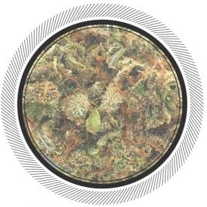 Resin pockets can be found in this premium Citrus Skunk from Kootenay Fire, buy it online at WhitePalm