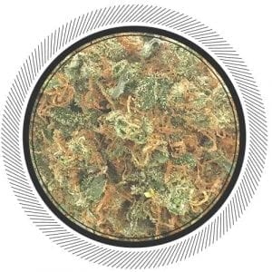 Buy Critical Mass strain at Canada's best online dispensary