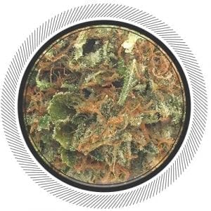 Buy Organic Rockstar from BC at WhitePalm, Canada's #1 online dispensary