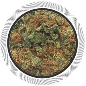 Buy Big Bud strain online