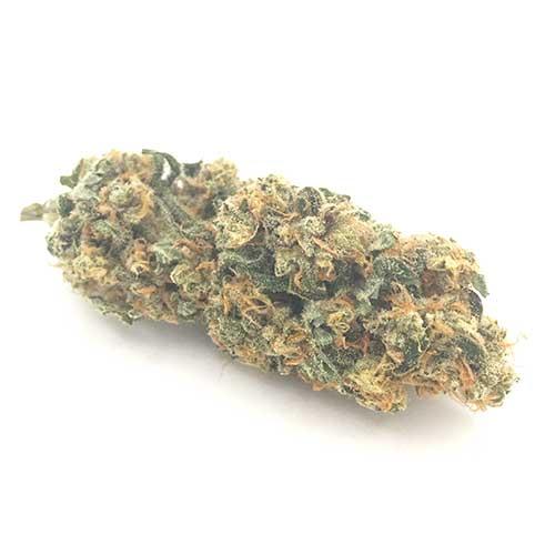 Buy Blue Dream strain online