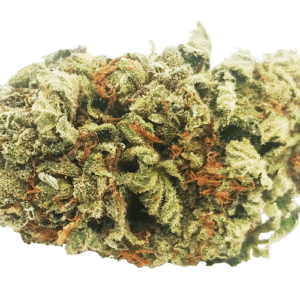 scout master strain nug picture