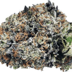 godzilla strain online canada, close up picture