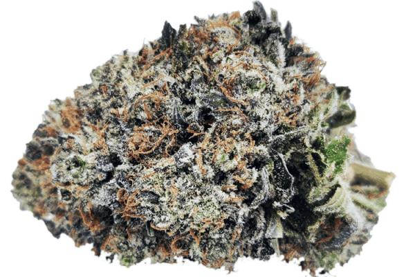 godzilla strain online canada, close up picture