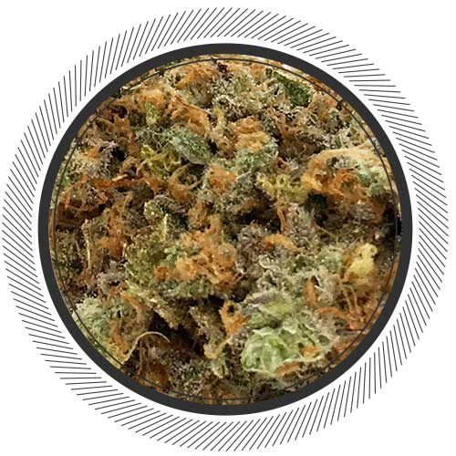 Order Lime Sour Diesel online in Canada