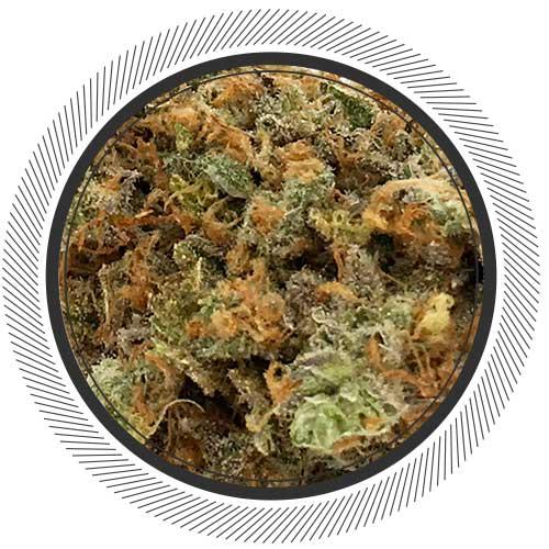 Lime-Sour-Diesel-Order-Online-Cannabis-1