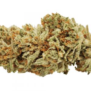 buy Shishkaberry strain online Canada
