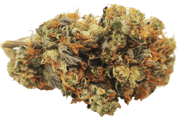 Lindsay Kush picture online Canada, budget buds