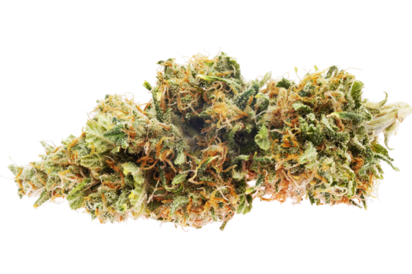 Harle Tsu #7 high cbd strain online