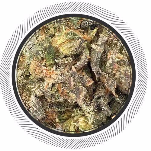 Order Girl Scout Cookies strain online