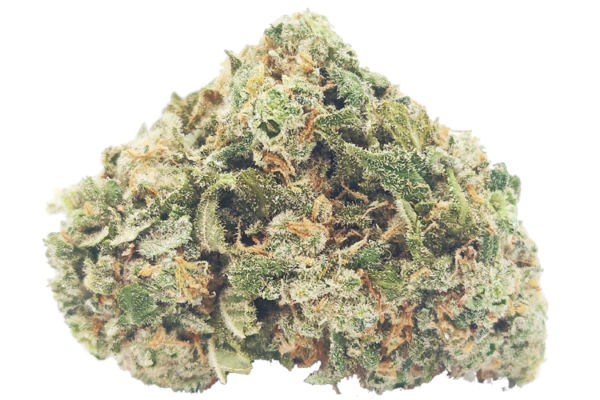 Cookie Monster strain picture