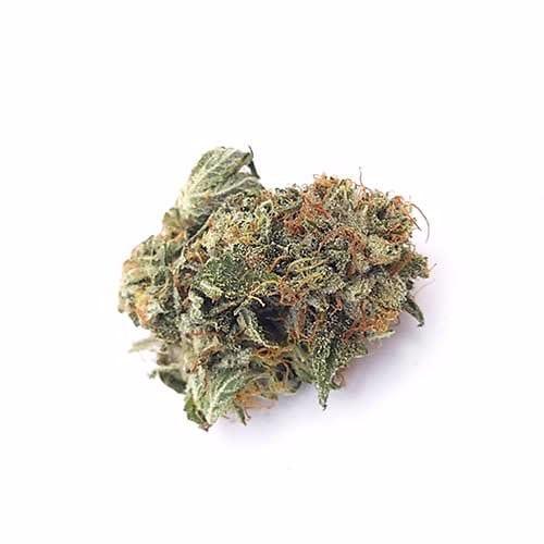 Order Bamm-Bamm Bud strain online