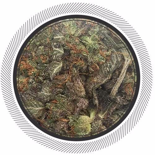Order Super Purple Strain online, weed deals canada