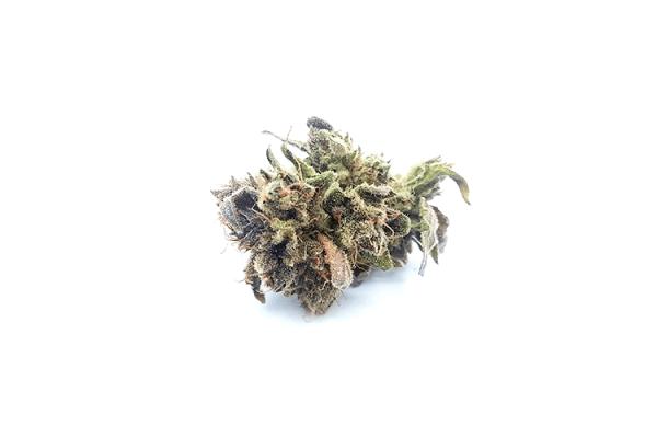 Order Blue Crush strain online