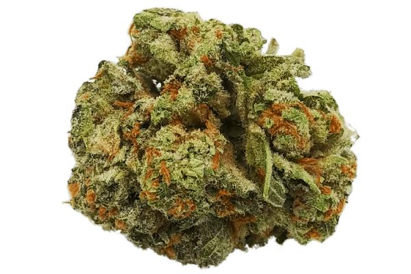 Order Orange Crush strain online