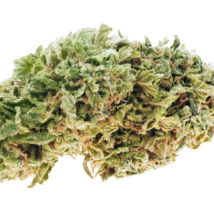 Moby Dick strain online Canada
