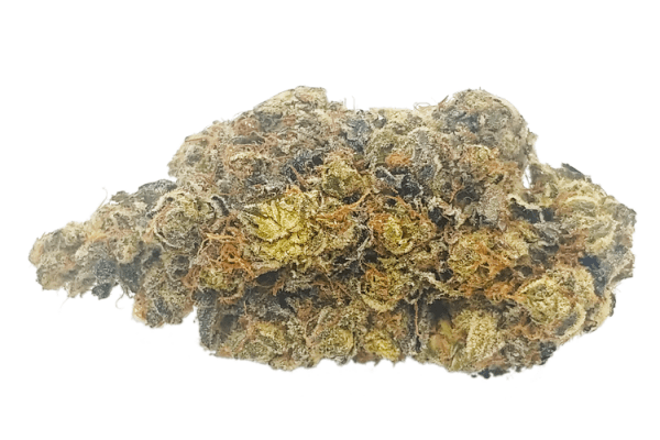 Order aged Greasy Pink Bubba online