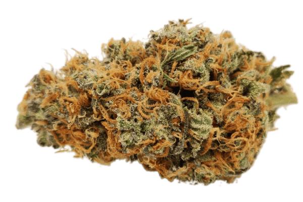 Order Blue Lemon strain online, premium Sativas Canada
