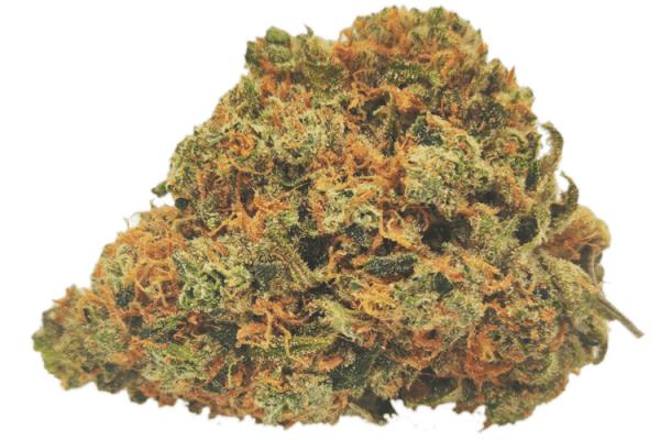 picture of citrique strain