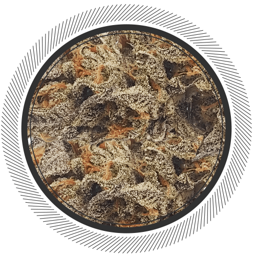 Order London Fog strain online in Canada