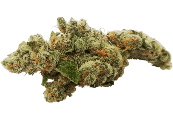 Order Chewy Cookie strain online Canada