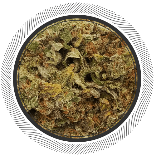 Order sour patch strain online Canada