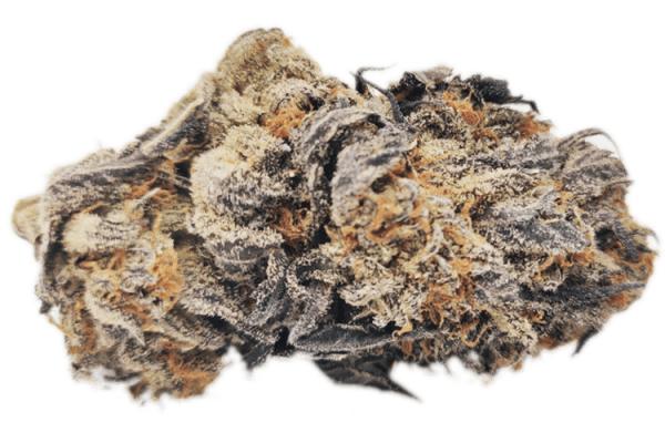 order platinum blackberry strain online canada
