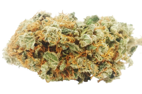 Orange Crush strain online Canada
